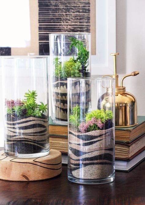 Piante Grasse In Vetro.Il Giardino In Una Bottiglia Di Vetro Arreda Con Sara
