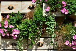 Come allestire gli spazi di piccoli dimensioni con effetto giardino