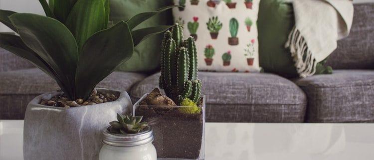 Per ritrovare il benessere preoccupati di allestire ambienti in grado di rilassare