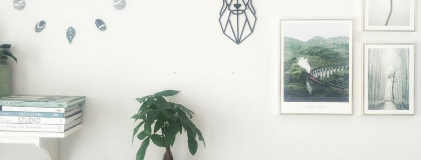 wall gallery a tema natura con posterstore