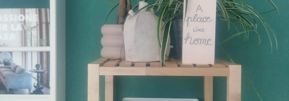 Circondati di piante in casa