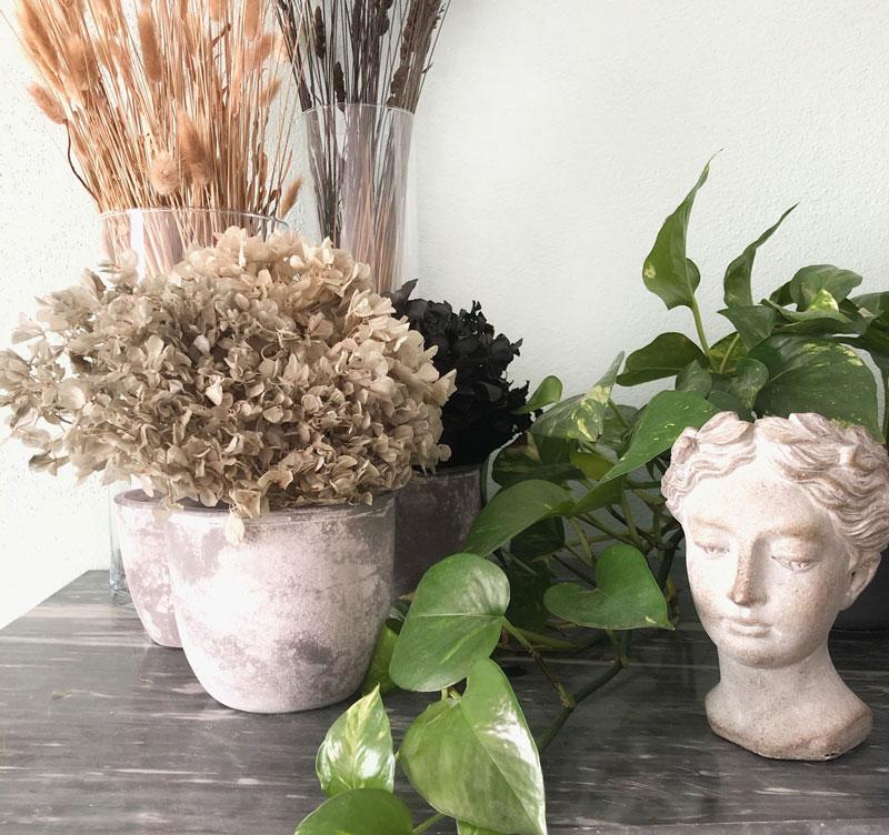 Piante e fiori finti